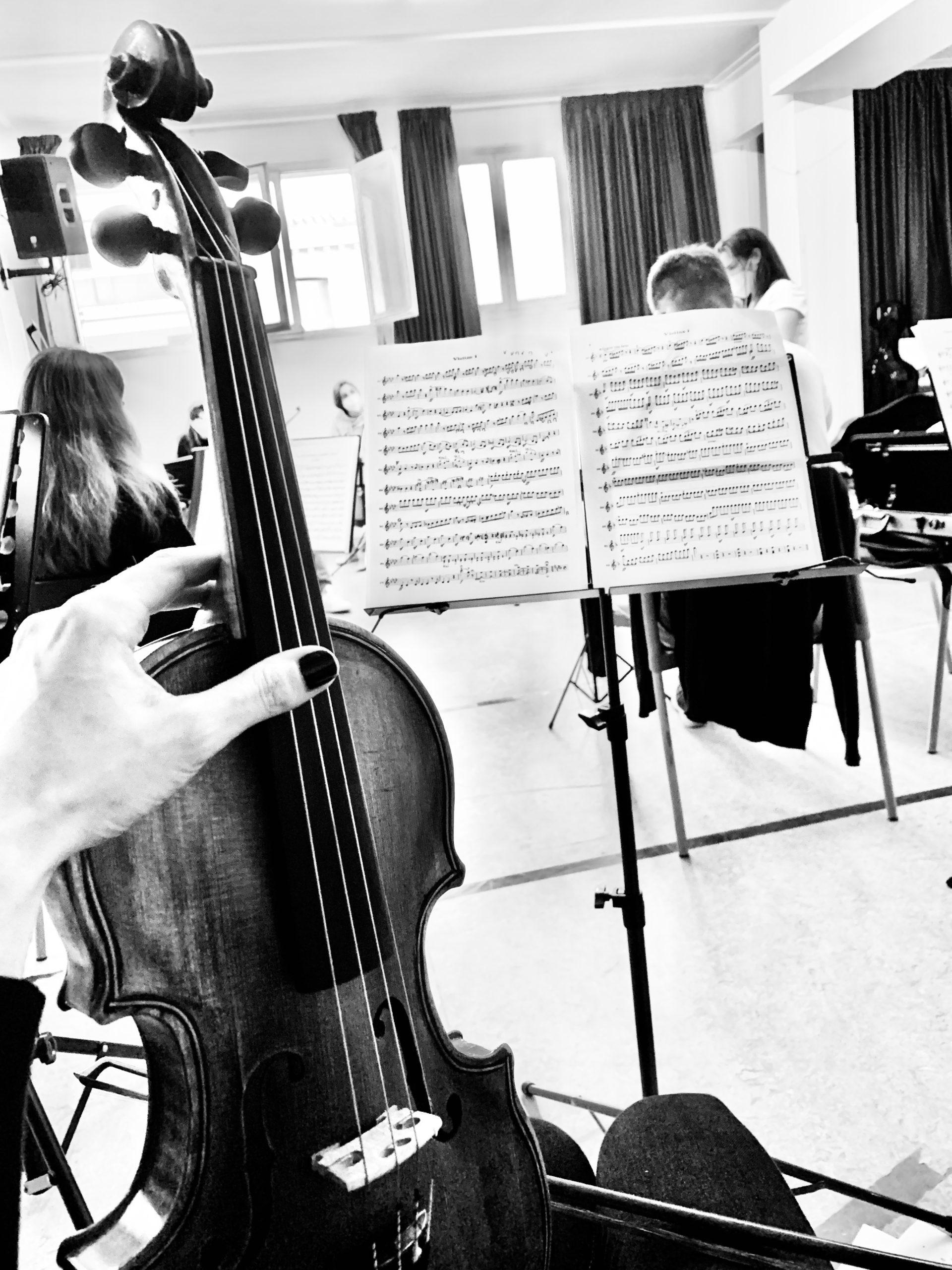 El violí fet per la propia violinista